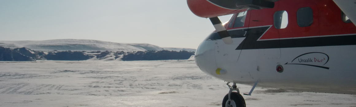 Aircraft on the ice